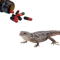 Препарати для захисту і лікування рептилій