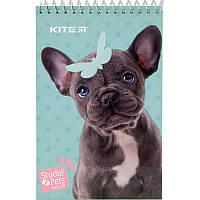 Блокнот KITE Studio Pets SP19-196-2, А6, 48 листов, нелинованный