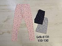 Модные лосины для девочек 110/160 см