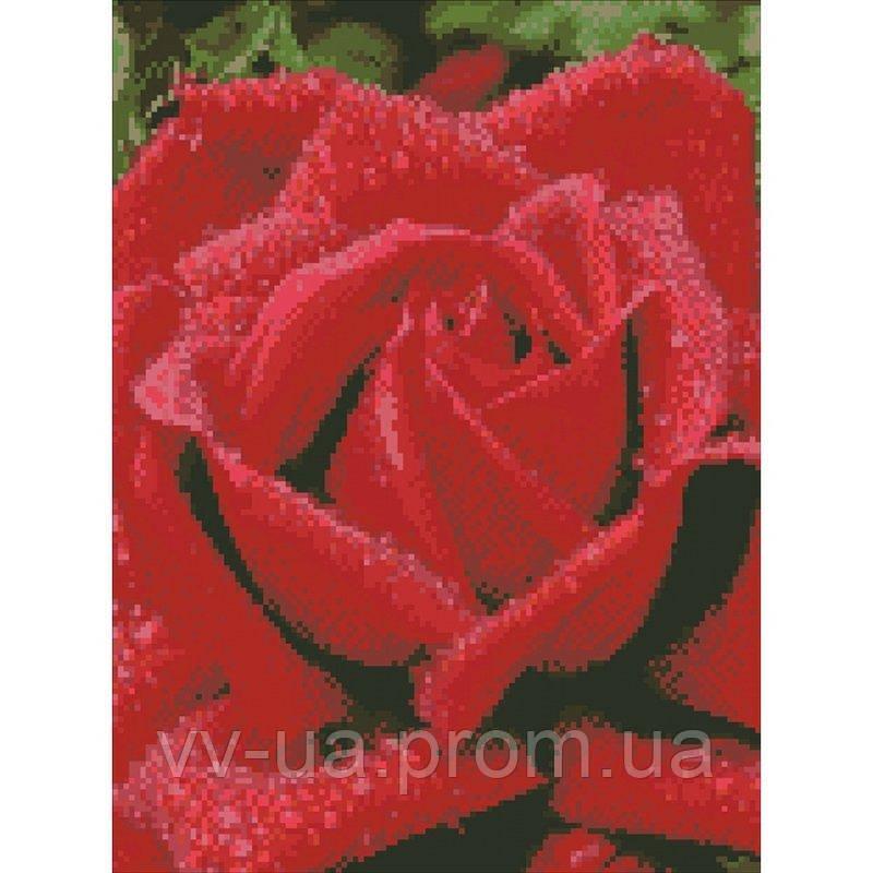 Алмазная мозаика Душистая роза, 30x40 см, Идейка