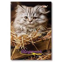 """Дневник школьный, обложка твердая Бриск """"Котик"""""""
