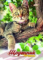 """Дневник школьный, обложка твердая Бриск """"Кот на ветке"""""""