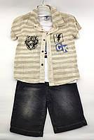 Детские костюмы 1, 2, 3, 4 года Турция летний с шортами для мальчиков бежевый (КД19)