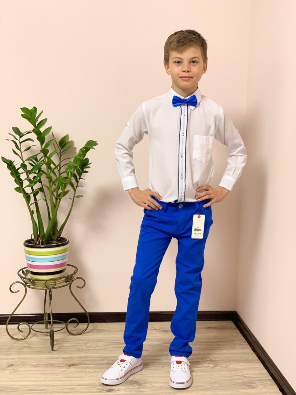 Нарядный костюм для мальчика: белая рубашка и ярко-синие брюки электрик