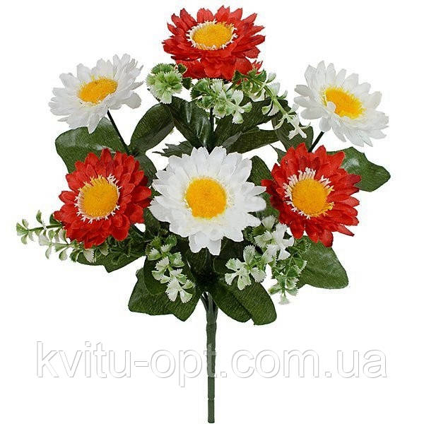 Букет хризантема  двухцветная, 30см ( по 20 шт в уп.)