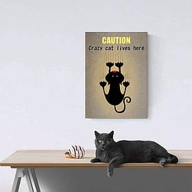 """Постер """"Cat"""""""