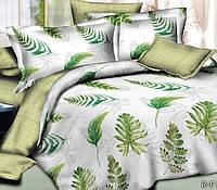 Комплект Зелень, ранфорс (Хлопок)
