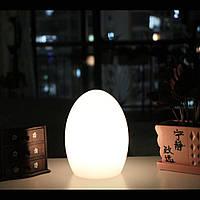Беспроводной светодиодный светильник EGG1