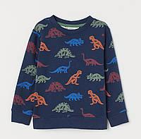"""Свитшот утепленный """"Динозавры"""" для мальчика, H&M, 0749114001"""