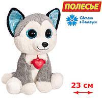Мягкая игрушка Собачка глазастик Хаски,Fancy (GHK0\S)