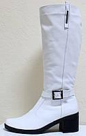 Сапоги белые женские зимние на каблуке от производителя модель Л421Р