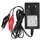 Зарядное устройство для гелевого аккумулятора NIC TS-1012C, фото 2
