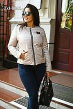 Куртка жіноча весняна  демісезонна  силіконізований СИНТЕПОН