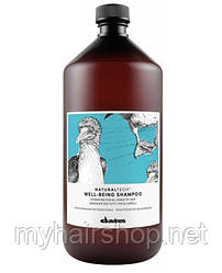 Шампунь увлажняющий DAVINES NATURAL TECH Well-being shampoo 1000 мл