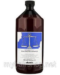 Шампунь балансирующий DAVINES NATURAL TECH Rebalancing Shampoo 1000 мл