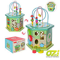 Деревянный развивающий куб Vi Vi Wood Toy MD 2267 8в1