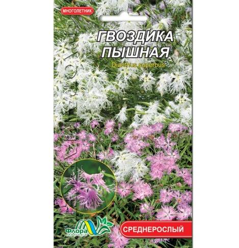 Гвоздика Пишна, багаторічна рослина, насіння квіти  0.1 г
