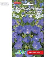 Колокольчик Карпатский, многолетнее растение, семена цветы 0.05г