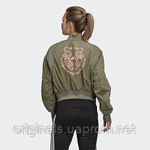 Куртка женская Adidas VRCT FN1516 , фото 2