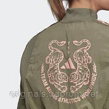 Куртка женская Adidas VRCT FN1516 , фото 3