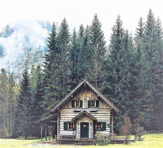 Строительство деревянных домов фото