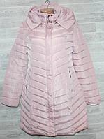 """Куртка женская демисезонная стеганая, размеры S-2XL (4цв) """"ZIKE"""" недорого от прямого поставщика"""