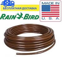 Капельная труба с компенсацией Rain Bird XFDripline33-100 D17 мм, L33 см, Q2.3 л/ч (100м)