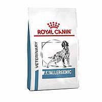 Сухой корм Royal Сanin Anallergenic Dog для собак 8КГ