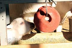 """Соль-лизунец для овец и коз """"SELCO BLOCK"""" 3 кг (ROYAL ILAC, Великобритания-Турция)"""