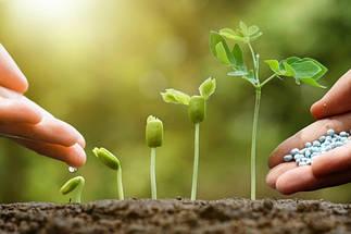 Стимулятори та регулятори росту рослин.