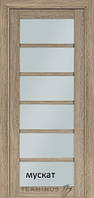 Двери Sweet doors 307 TERMINUS NanoFlex со стеклом 60, 70, 80, 90 см