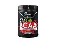 Аминокислоты AMINO BCAA 2:1:1, Powerful Progress, ассортимент вкусов, 500 г