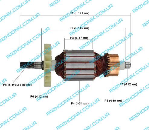 Якорь на дисковую пилу Зенит ЗПЦ-2300, фото 2
