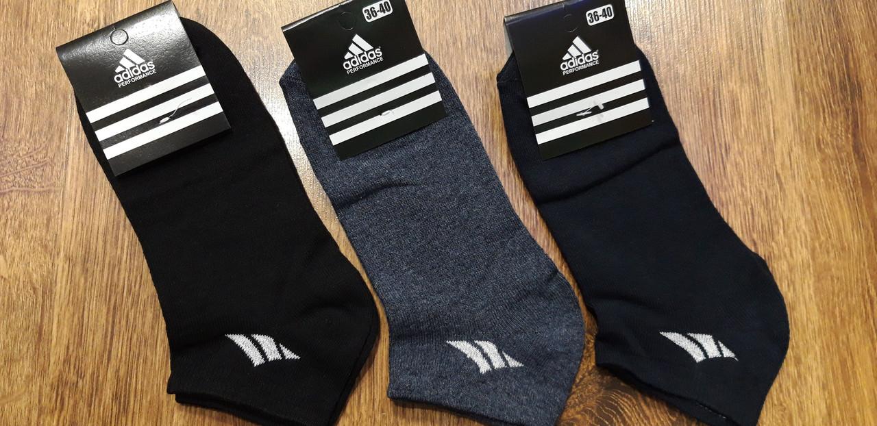 """Жіночі стрейчеві шкарпетки в стилі """"Adidas W"""" Туреччина 36-40 короткі"""