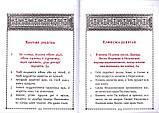 Псалтирь учебная на церковно-славянском языке с параллельным переводом на русский язык П. Юнгерова, фото 3