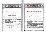 Псалтирь учебная на церковно-славянском языке с параллельным переводом на русский язык П. Юнгерова, фото 4