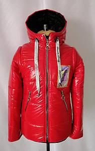 Куртки для девочек весенние от производителя   34-44  красный
