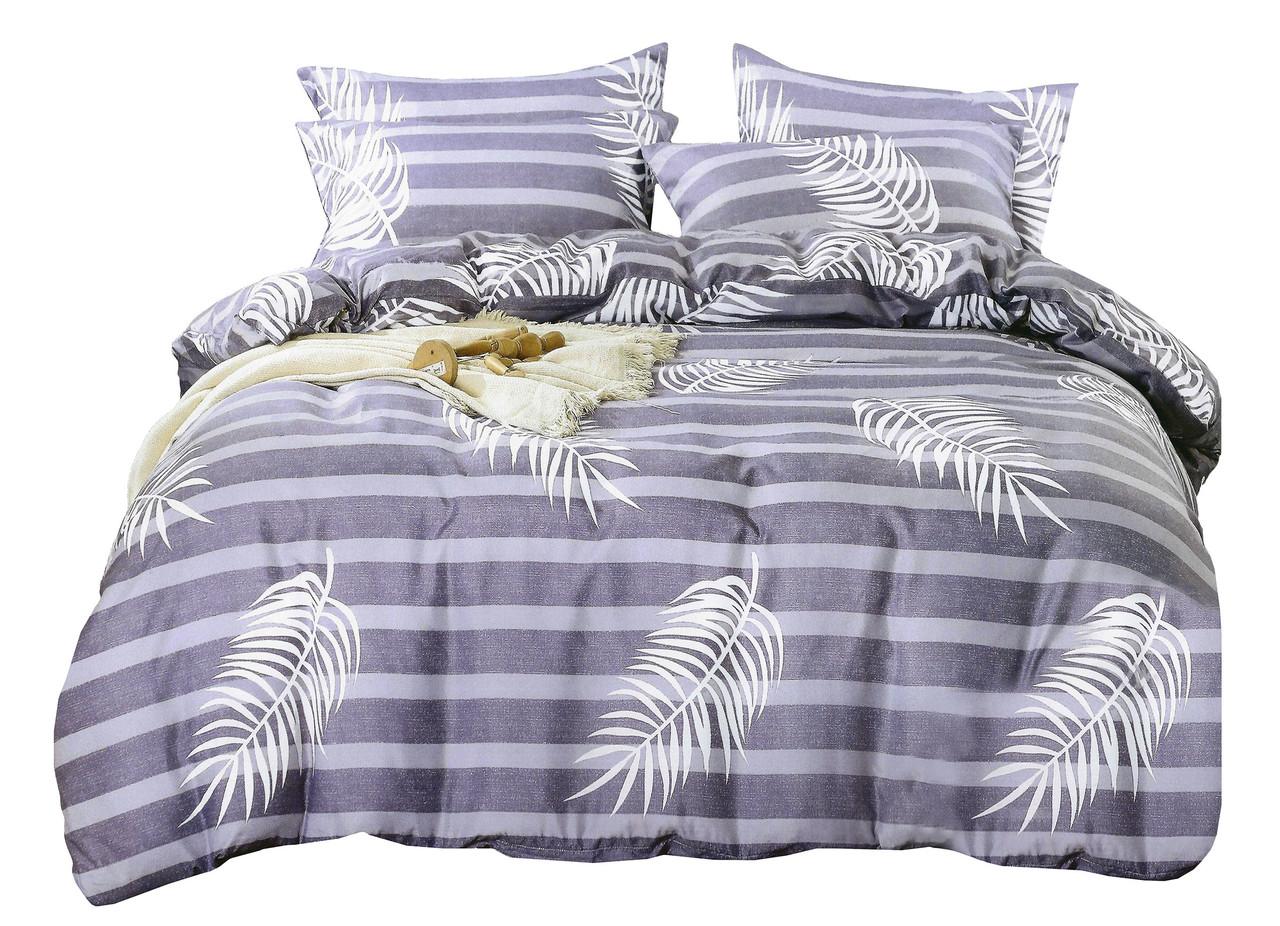 Комплект постельного белья Сатин Dalwin 145 M&M 3034 Белый, Фиолетовый