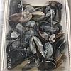 Мидии в ракушке в соусе (на выбор - грибной, томатный, каперсово-сливочный), 550грамм, фото 4