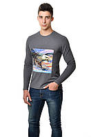 Модная мужская хлопковая футболка с длинным  зауженным рукавом  с интиресным принтом орла на груди цвета антрацит