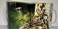 """Чашка подарункова для бджоляра, для любителів меду та пасіки """"Бджоли """""""