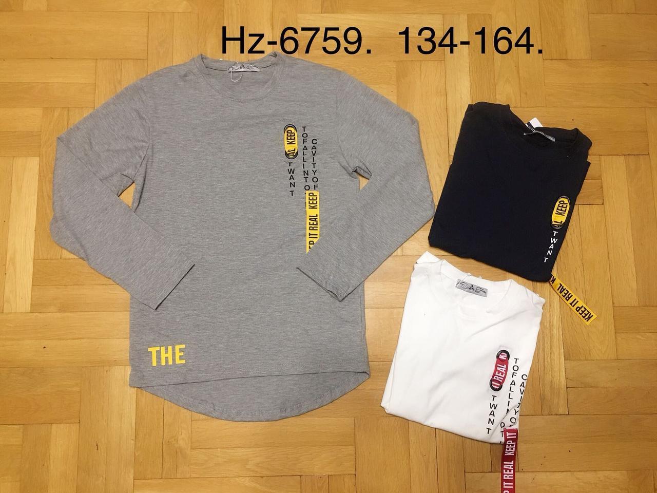 Регланы для мальчиков оптом, размеры 134-164 р, Active Sports, арт. HZ-6759