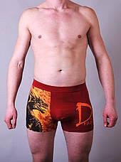 Мужские трусы боксеры  C+3, фото 2