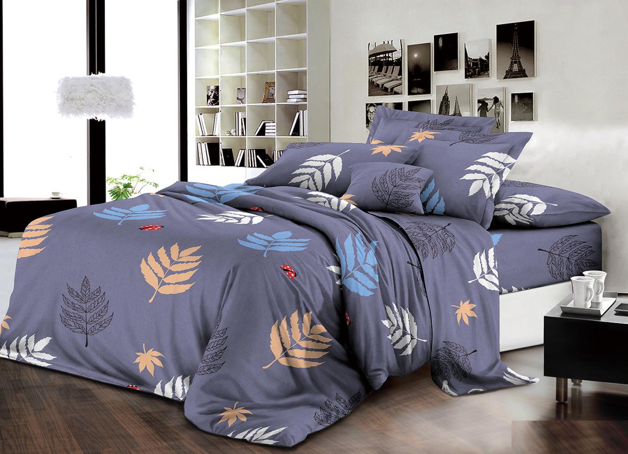 Двуспальный комплект постельного белья евро 200*220 хлопок  (13731) TM KRISPOL Украина
