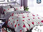 Комплект постельного белья Микроволокно HXDD-700 В сердечка M&M 0672 Красный, Серый, фото 2
