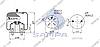 Пневморессора со стаканом в сборе (сталь) Mercedes Atego 4786NP21 \9423204521 \ SP 554786-K01, фото 2