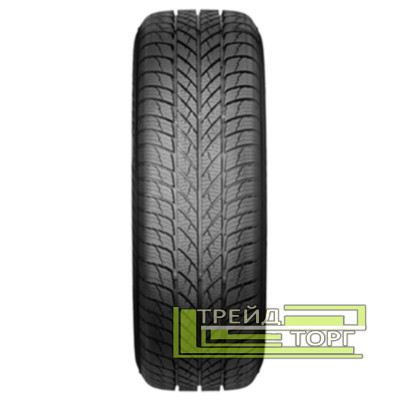 Зимняя шина Paxaro INVERNO 245/45 R18 100V XL FR
