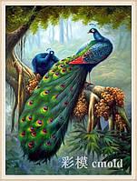 """Алмазная вышивка """"Пара павлинов в джунглях на ветке"""""""
