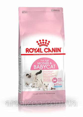 Royal Canin Mother&Babycat 2кг для котят до 4 месяцев, беременных и кормящих кошек, фото 2