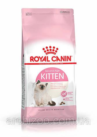 Royal Canin Kitten 2кг для котят до 12 месяцев, фото 2